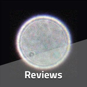 academy_category_reviews