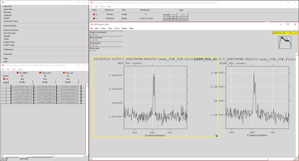 RadioUniversePRO: software for SPIDER radio telescopes